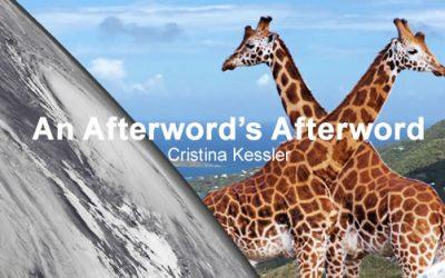 An Afterword's Afterword
